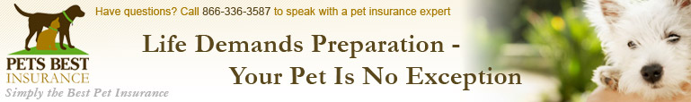 Pets Best Home Page